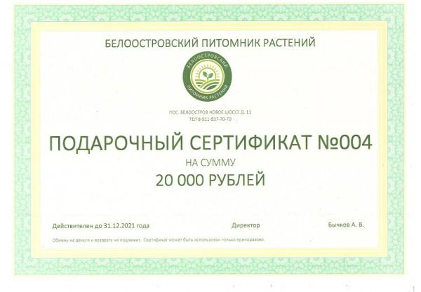 Подарочный сертификат на покупку растений 20000р