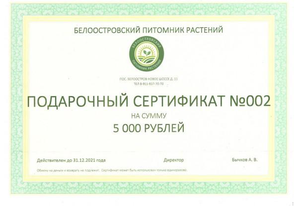 Подарочный сертификат на покупку растений 5000р